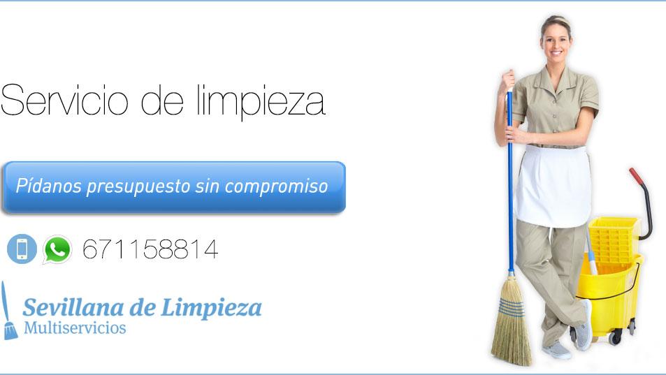 Empresa de limpieza en el aljarafe for Empresas de limpieza en castellon